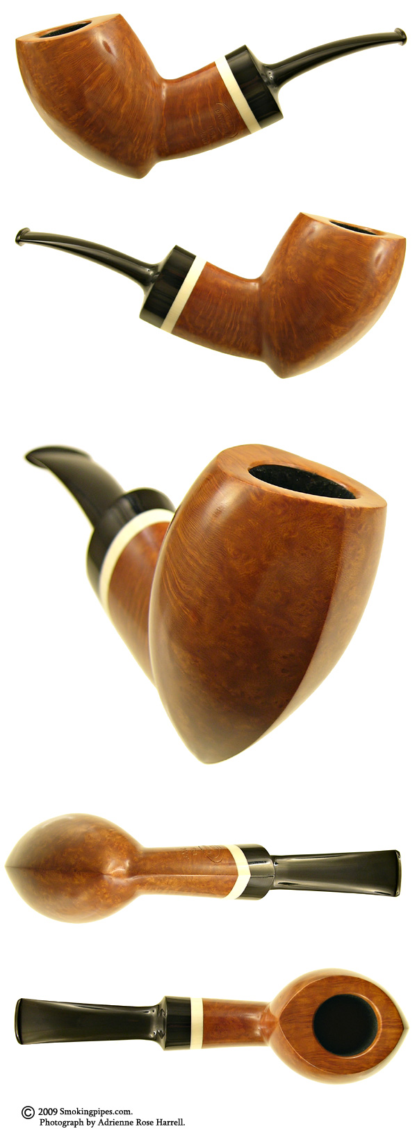 Smooth Almond with Mastodon Ivory