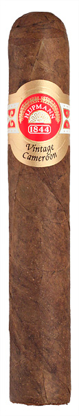 Vintage Cameroon Robusto (Single)